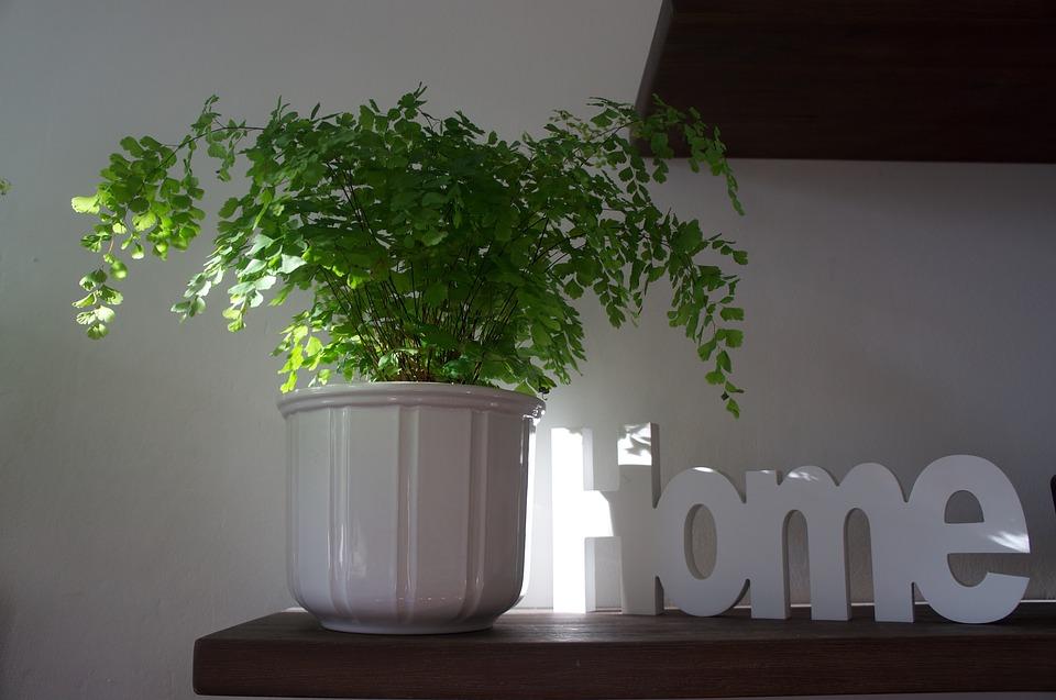 Boliginspiration: Er du til moderne minimalisme eller hygge i hjemmekontoret?